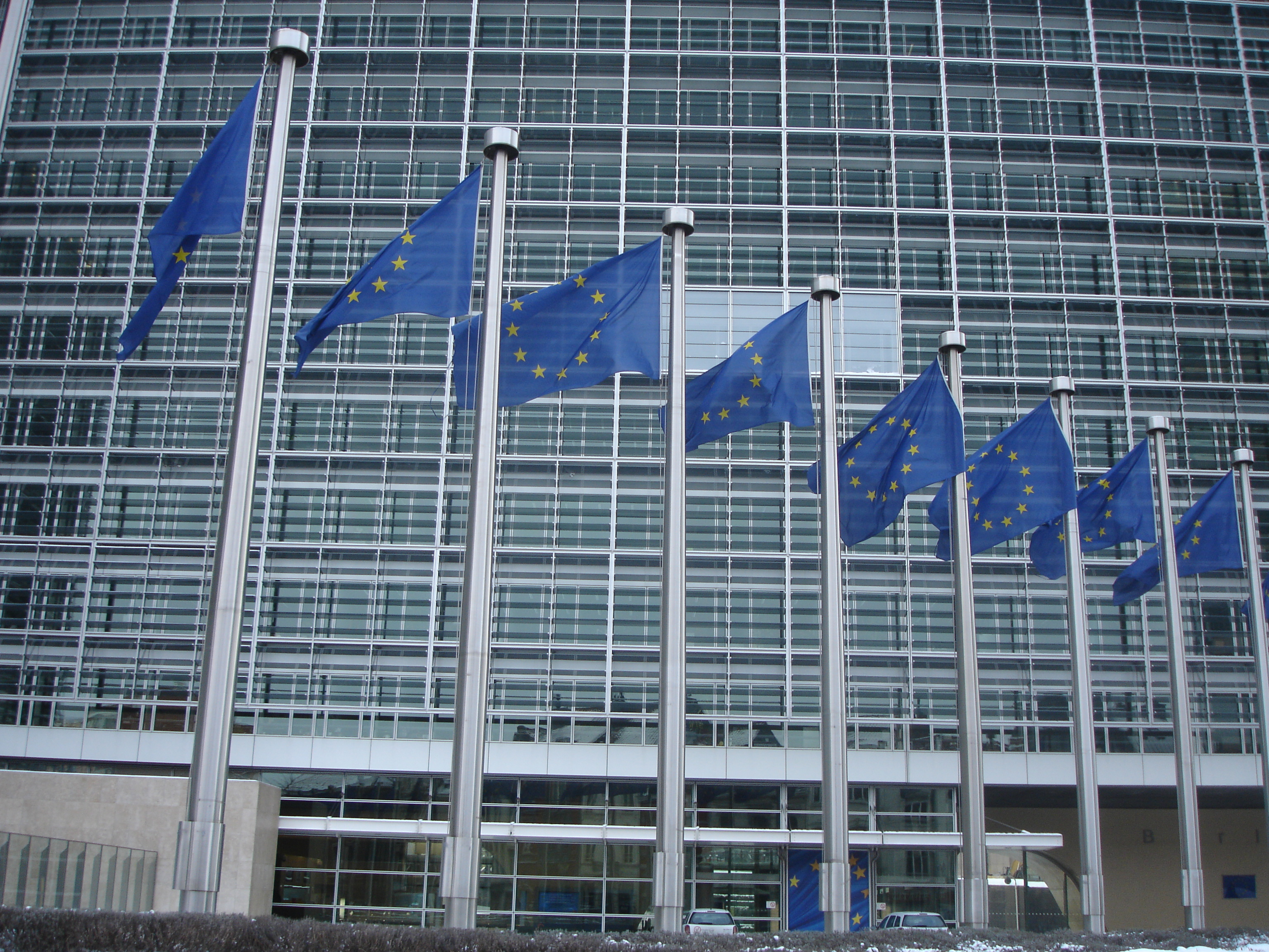 European Commission VP Talks Digital Single Market, Safe Harbor